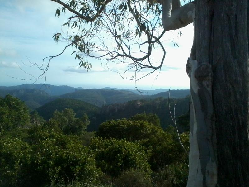 randonnées, trail, VTT (location possible)